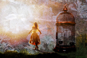 Free of Cage by Alice Popkorn  Used with Permission  Creative Commons License https://www.flickr.com/photos/alicepopkorn